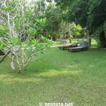Amal Villa Garten