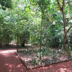 Herbal Garden von Bentota