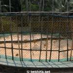 Sea Turtle Farm Bentota