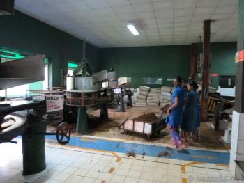 Teefabrik-SriLanka13
